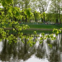 Летний сад. :: Марина Харченкова