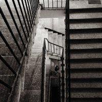 Лестница N 1 :: Лариса Журавлева