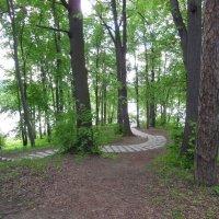 Парк в Царицыно :: Андрей Солан