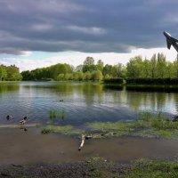Парк Авиаторов 30.05.2017. :: Sergey Gordoff