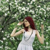 Белый танец яблонь. :: Сергей Гутерман