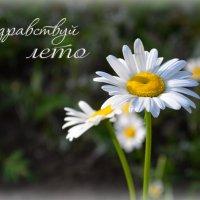 Вот и лето к нам пришло..))) :: *MIRA* **