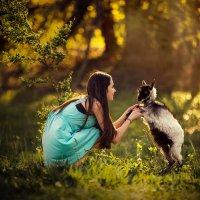 Друзья на закате :: Янина Гришкова