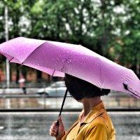 Летний дождь :: Татьяна Пилипушко