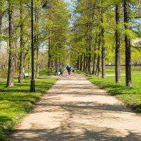 Питер Московский парк Победы :: Юрий Плеханов