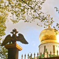фрагмент Фёдоровского собора в Царском Селе :: Елена