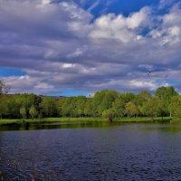 Облака над прудом... :: Sergey Gordoff