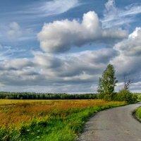 Летний ветер :: Лара Симонова