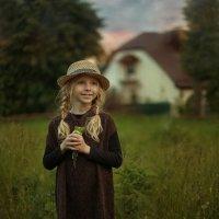 Летние зарисовки :: Надежда Шибина