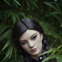 Дикая орхидея :: Алиса Колмагорова