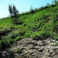 Камни, холмы, Каменец :: Peripatetik