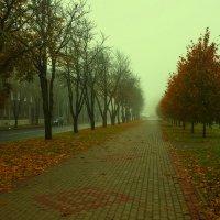 Туманное утро :: leo yagonen
