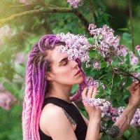 Purple :: Виктор Киевский (Raft & LEA)