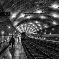 Railway station in the kingdom :: Dmitry Ozersky