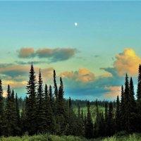 Вечер с луной :: Сергей Чиняев