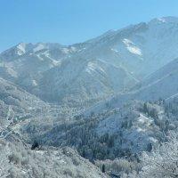 снежные горы :: Горный турист Иван Иванов