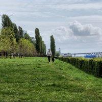 Прогулка по траве... :: Anatol L