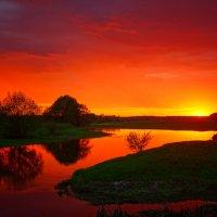 Золотая река :: Юлия