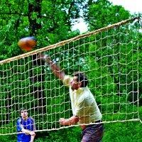 Решающий мяч! :: Vladimir Semenchukov