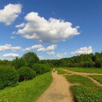 Надеюсь, окончательный приход лета :: Андрей Лукьянов