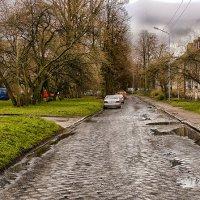 после дождя... :: Владимир Матва