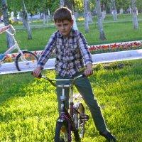 Велосипедисты :: Александр Алексеев