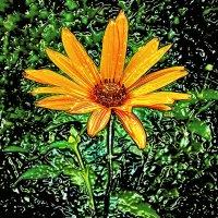 пластмассовый цветок :: Сергей