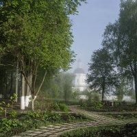 В тумане :: Ольга Решетникова