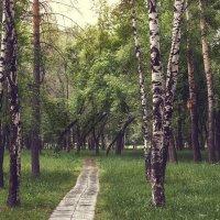 В парке :: Кирилл Богомазов