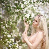 Цветущие сады :: Juli Ameli