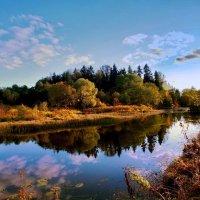 Тёплая осень :: Лара Симонова