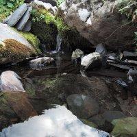 Чистая вода :: Денис Масленников