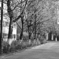 студенческие общежития а Лефортово :: aleksandr Крылов