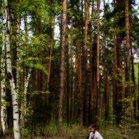 В сказочном лесу. :: Татьяна ***