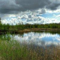 Зависла туча над озером :: Милешкин Владимир Алексеевич