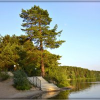 Лестница к озеру :: Natalia Alekseeva