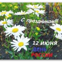 С ДНЁМ РОССИИ,ДРУЗЬЯ!!! :: Тамара (st.tamara)