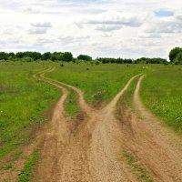 2 пути, 2 дороги... :: Андрей Головкин