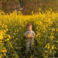 В рапсовом поле :: Милада Шестопалова