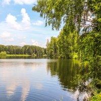 Природная красота :: Артем Наумов