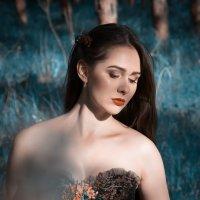 сказки леса :: Светлана Курцева