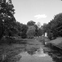 В   парке   Ивано - Франковска :: Андрей  Васильевич Коляскин