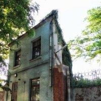 Странный домик! :: Ирина Сивовол