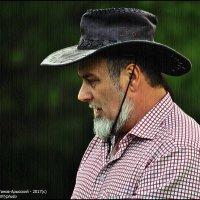 КОВБОЙ, :: Валерий Викторович РОГАНОВ-АРЫССКИЙ