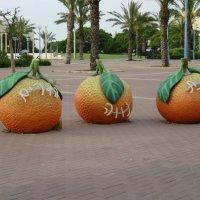 Три апельсина :: Герович Лилия