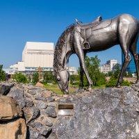"Памятник ""Лошадь белая"" :: Ruslan"