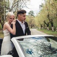 Руслан и Соня :: Николай Крик