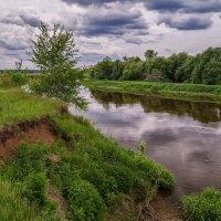 Течёт река Клязьма :: Андрей Дворников