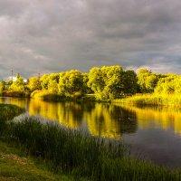На реке Цне................ :: Александр Селезнев