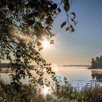 утро на озере :: Василий И
